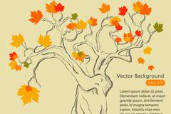 精美秋季枫树矢量素材