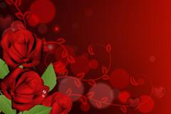 梦幻玫瑰背景矢量素材