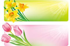 春季花卉边框横幅矢量素材