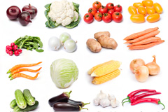 24种常见蔬菜高清图片素材