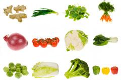 16种高清蔬菜图片素材下载
