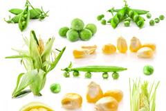 玉米和豌豆高清图片下载