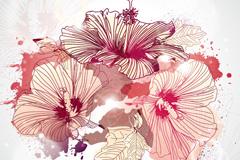 精致花卉插画矢量素材