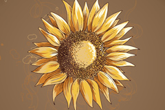 手绘向日葵背景矢量素材
