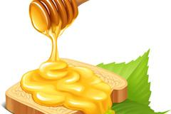 新鲜蜂蜜矢量素材