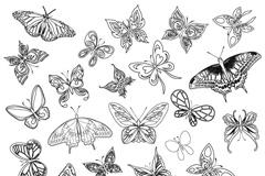 简洁手绘蝴蝶设计矢量素材