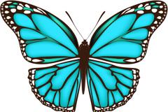 精美蓝色蝴蝶矢量素材