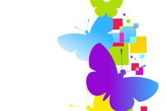 抽象彩色蝴蝶矢量素材