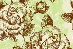 铅绘玫瑰矢量素材
