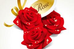 精美露珠玫瑰矢量素材