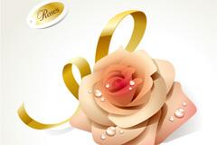 丝带粉色玫瑰矢量素材