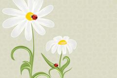 小清新花卉背景矢量素材