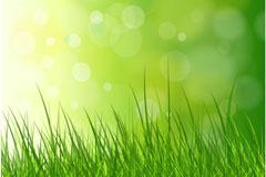 青葱草地矢量素材