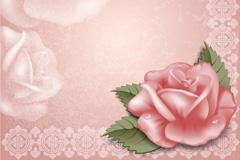 玫瑰花装饰边框矢量素材