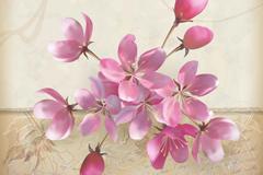 美丽花卉背景矢量素材