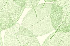 淡雅绿叶背景矢量素材