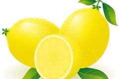 新鲜柠檬矢量素材