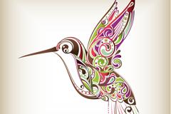 花纹蜂鸟矢量素材