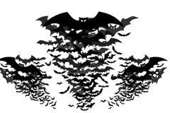 蝙蝠群剪影矢量素材