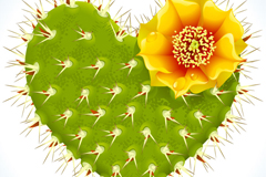 绿色心型开花仙人掌矢量素材