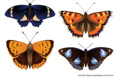 卡通彩色蝴蝶设计矢量素材